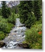 Pure Rocky Mtn. Spring Water Metal Print