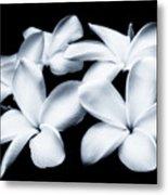 Pure White Large Canvas Art, Canvas Print, Large Art, Large Wall Decor, Home Decor, Photography Metal Print