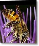 Purpel Nectar Metal Print