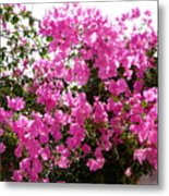 Purple Abundance Metal Print