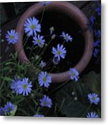 Purple And Blue Flowers Metal Print
