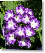 Purple And White Bouquet Metal Print