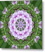 Purple And White Flowers  Metal Print