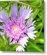 Purple Bloom Metal Print