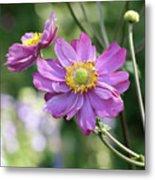 Purple Blossoms 2 Metal Print