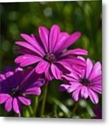 Purple Bouquet Metal Print
