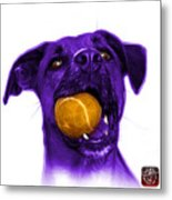 Purple Boxer Mix Dog Art - 8173 - Wb Metal Print