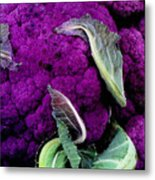 Purple Cauloflower Metal Print