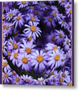 Purple Daisy Abstract Metal Print
