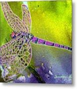 Purple Dragonfly Metal Print