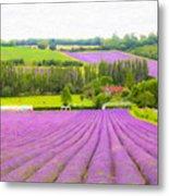 Purple Fields Of Love Metal Print