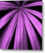 Purple Fireworks Metal Print