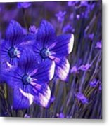 Purple Florwer Abstract Metal Print by Marjorie Imbeau