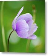 Purple Flower Looking Right Side Metal Print