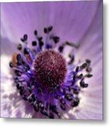 Purple Flower Universe Metal Print