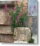 Purple Flowers In Ruins Metal Print
