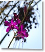 Purple Flowers In The Sky Metal Print