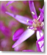 Purple Fragrance Metal Print