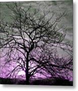Purple Haze Across The Sky Metal Print