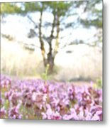 Purple Heal-all Metal Print