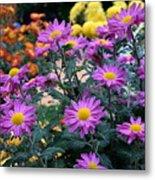 Purple In Garden Metal Print