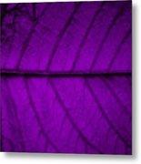 Purple Leaf Metal Print