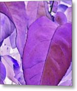 Purple Leaves Metal Print
