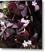 Purple Leaves With Tiny Pink Flowers Metal Print