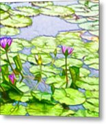 Purple Lotus Flower  Metal Print