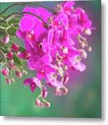 Purple Orchid Branch Metal Print