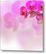Purple Orchid Flower On Blur Background Metal Print