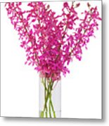 Purple Orchid In Vase Metal Print