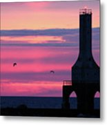 Purple Perfection In Port Metal Print