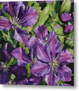 Purple Persuasion Metal Print