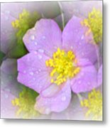 Purple Prism Metal Print