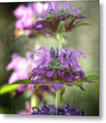 Purple Promises Metal Print