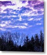 Purple Puffs Metal Print