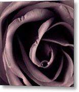 Purple Rose Metal Print