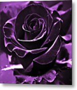 Purple Seduction Metal Print