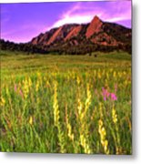 Purple Skies And Wildflowers Metal Print