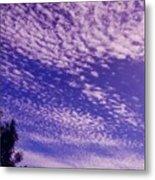 Purple Sky At Casapaz Metal Print