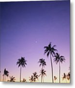 Purple Sky Palms Metal Print
