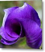 Purple Vortex Metal Print