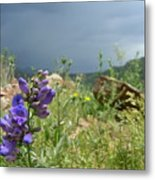 Purple Thunder Metal Print