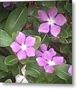 Purple Vintas Flower Photograph Metal Print