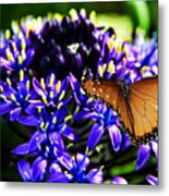 Purple World Metal Print