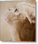 Purty Face Metal Print