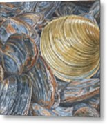 Quahog On Clams Metal Print