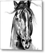Quarter Horse Head Shot In Bic Pen Metal Print
