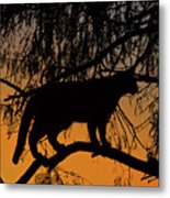 Queen Of The Tree Metal Print